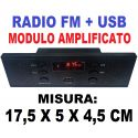 MODULO AMPLIFICATO CASSA ACUSTICA PANNELLO INCASSO RADIO + USB * 17,5 X 5 CM