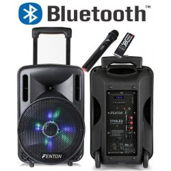 "CASSA AMPLIFICATA 450W 10"" BLUETOOTH + BATTERIA + MICROFONO WIRELESS + USB - 1"