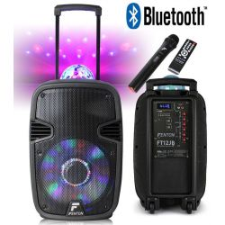 CASSA ACUSTICA AMPLIFICATA BATTERIE 700w TROLLEY RICARICABILE BLUETOOTH USB SD LED - 1